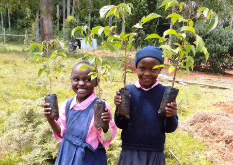 Volontariato in Kenya con Mount Kenya Environmental Conservation
