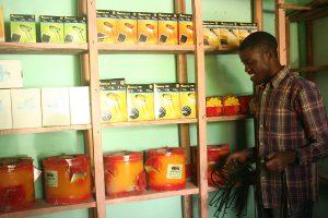 Volontariato in Uganda con ENVenture