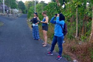 Volontariato in Indonesia con Friends of the National Parks Foundation