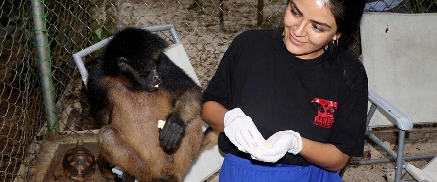 Volontariato in Perù con RAREC