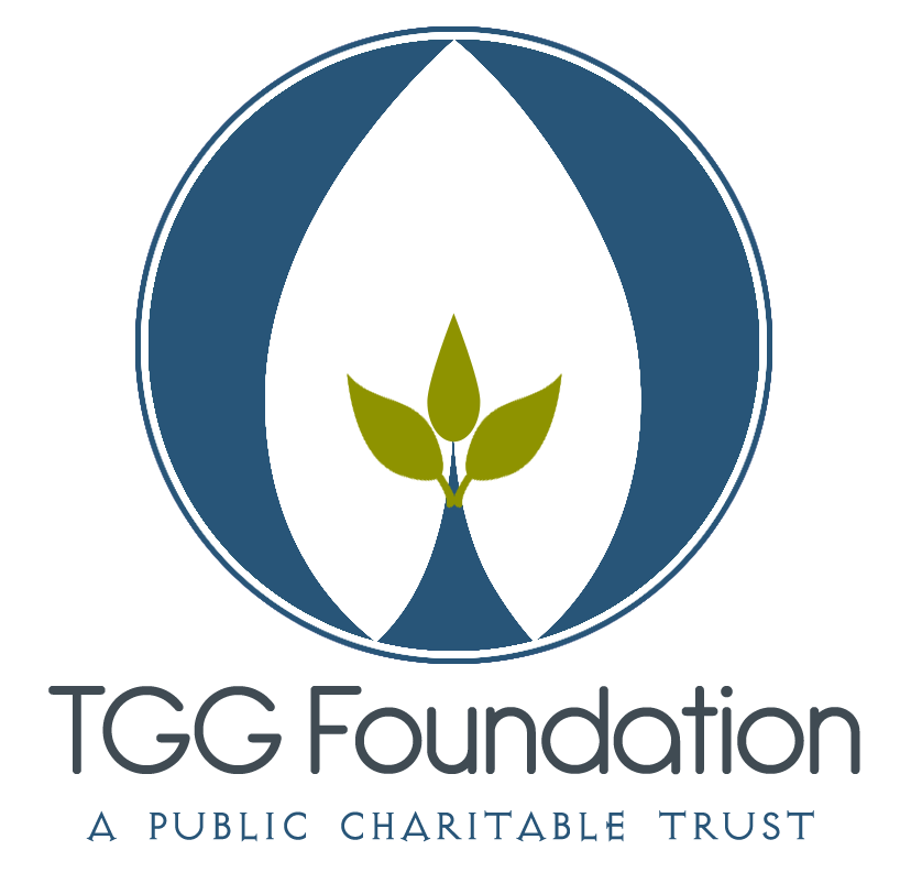 Volontariato in India con TGG Foundation