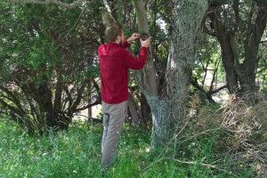 Volontariato-per-lambiente-sulla-isola-di-Kalamos-Terra-Sylvestris-004