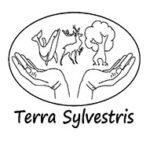 Volontariato-per-lambiente-sulla-isola-di-Kalamos-Terra-Sylvestris