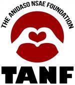 Volontariato in Ghana con TANF