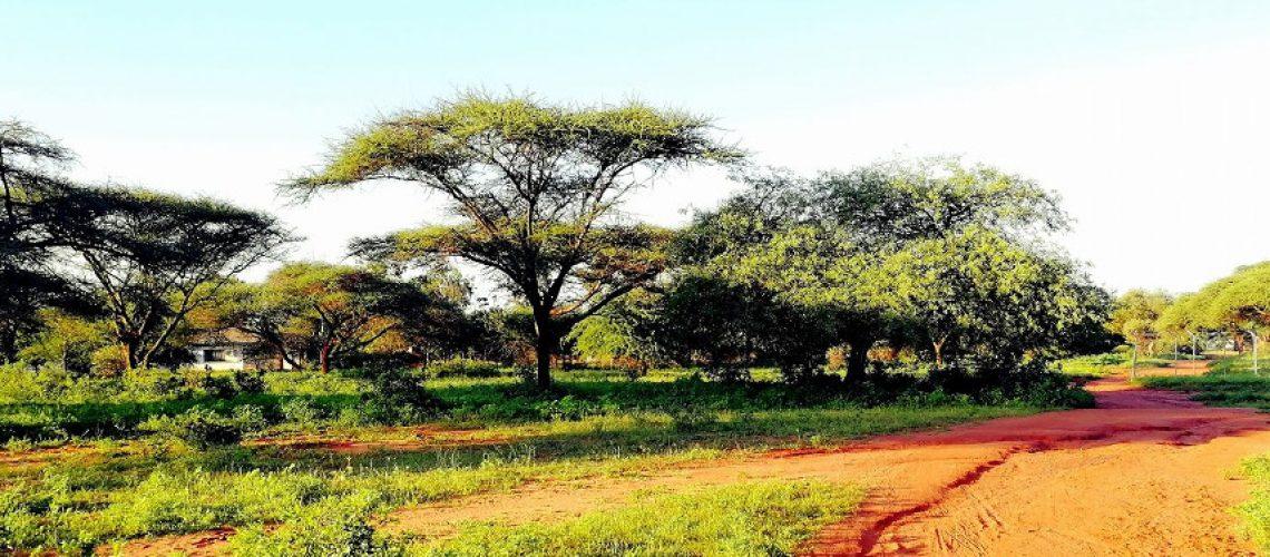 copertina-tanzania